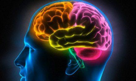 Maior estudo já realizado no mundo revela novas alterações cerebrais no Transtorno do Déficit de Atenção